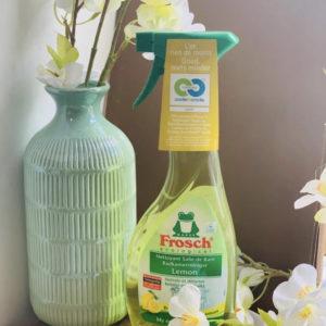 Frosch (Badkamer reiniger)